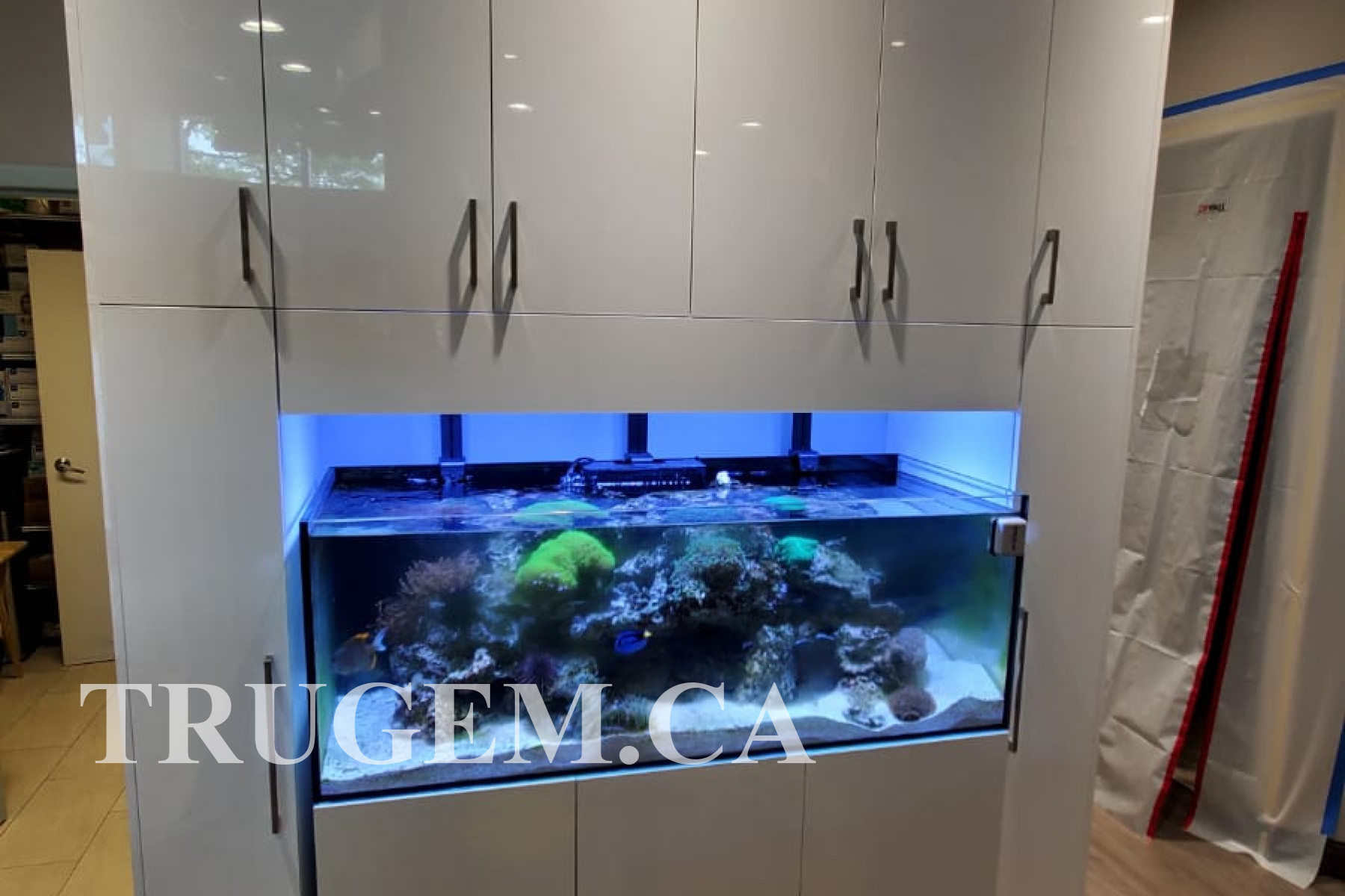 White Cabinets with Aquarium